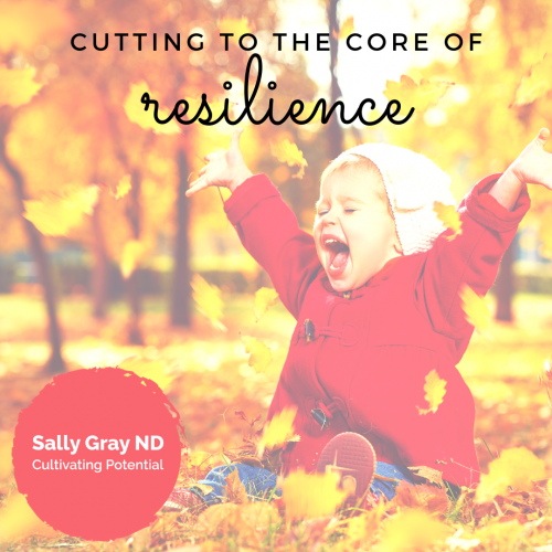 the core of resilience